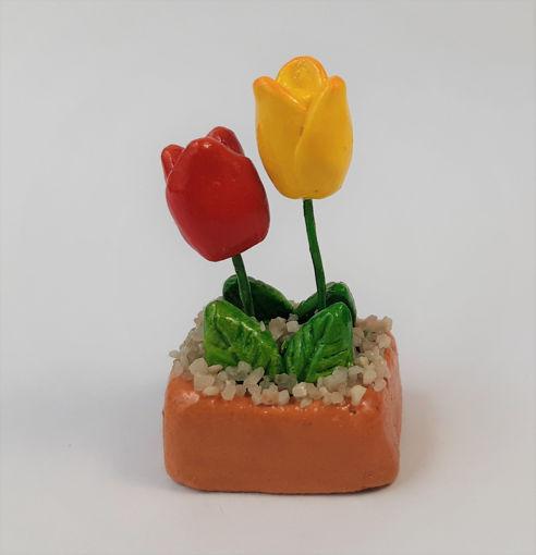 Imagen de Mini maceta  de Tulipanes