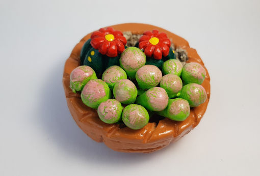 Imagen de Cactus terrario en canasto