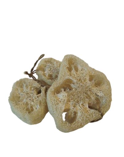 Imagen de Esponja vegetal y compostable