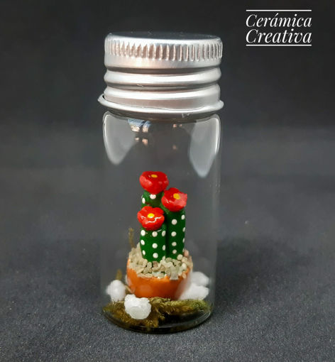 Imagen de Botellita con mini cactus de 3 florcitas