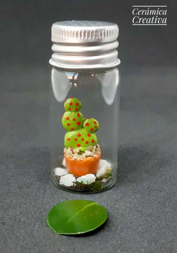 Imagen de Botellita con mini cactus Alas De Ángel