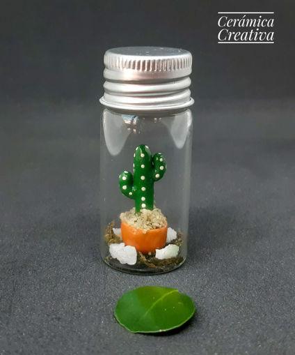 Imagen de Botellita con mini cactus Bracitos