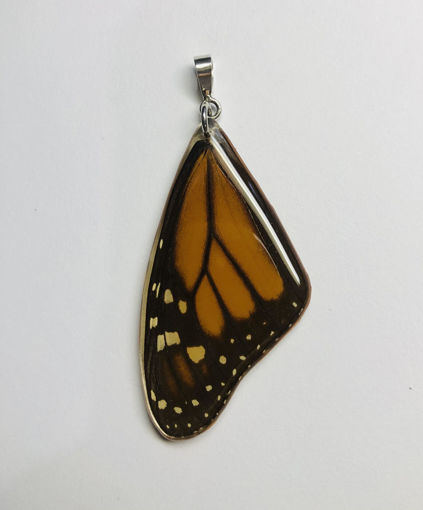 Imagen de Dije de Mariposa Monarca