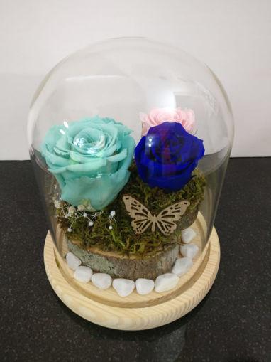 1 Rosa Mediana con 2 Rosas bebes preservadas