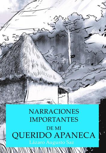 """Imagen de """"Narraciones importantes de mi querido Apaneca"""" de Carlos Calderón Saz"""