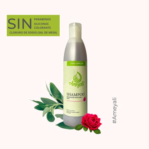 Imagen de Shampoo Hidratación Profunda
