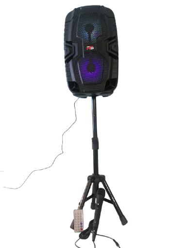 Imagen de Bocina Portable para fiestas TWS
